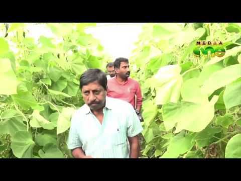Actor Sreenivasan visit organic farm in Qatar