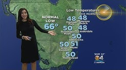Cold Weather In South Florida, But Not For Long