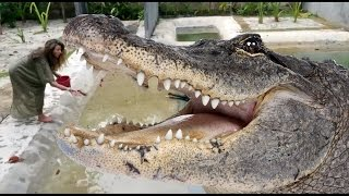 Малайзия - Жанна и Крокодилы @ Трэвел-влог от ЖАННЫ БАДОЕВОЙ