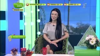 Доброе утро, Казахстан! Выпуск от 26.04.2017