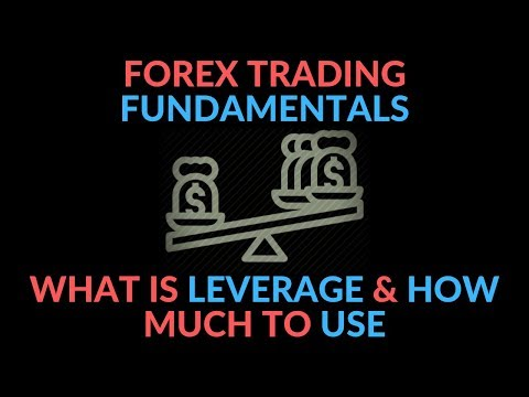forex-leverage-explain-for-beginners-&-what-leverage-is-best-in-forex-|-forex-trading-fundamentals