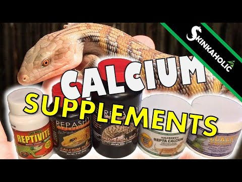 Calcium & Supplements For Blue Tongue Skinks (+3K SUBS Give Away!!!) - Ep. 69