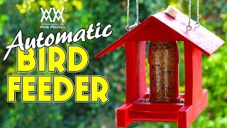 Make An Automatic Bird Feeder