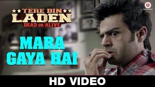 Mara Gaya Hai - Tere Bin Laden : Dead or Alive | Akshay Verma & Iman Crosson | Sikandar