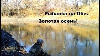 Рыбалка на Оби в Новосибирске. Октябрь 2019 Золотая осень! Рыбалка на карася и плотву.