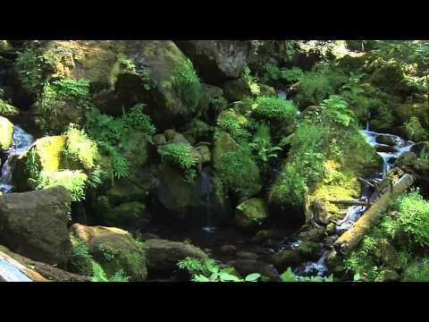 Guy Sweens -  песня горных потоков (релакс).