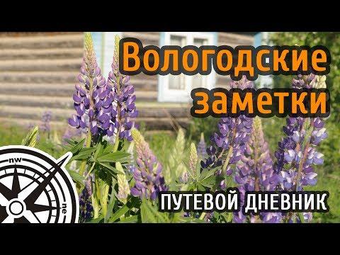 Вологда Подтопление деревни Бобровское Нюксенского
