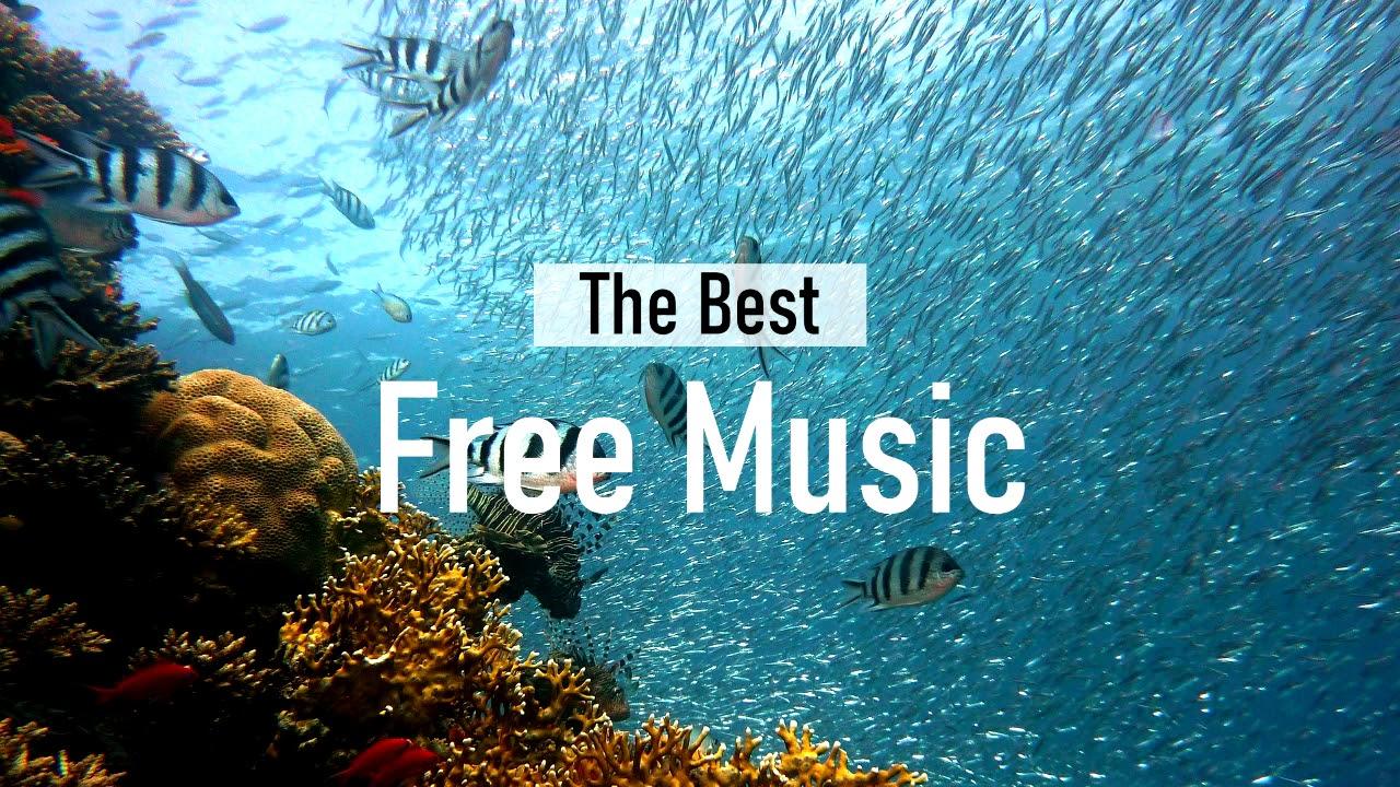 Vloggers Music _ Scandinavianz - Delta Dawn (No Copyright) [Free Download]