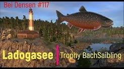 Russian Fishing 4 Ladogasee #117 (Trophy Bachsaibling)