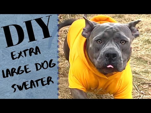 DIY EXTRA LARGE DOG SWEATER  LIFE HACKS FOR DOGS