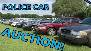 Local auction - colorful cop cars!