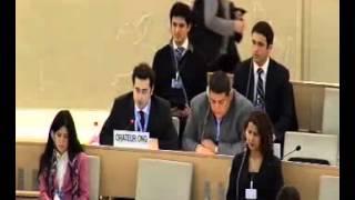 Bliski Wschód w ogniu, Rada Praw człowieka krytykuje Izrael