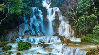 Zapętlaj Kuang Si National Park | Tourism Luang Prabang
