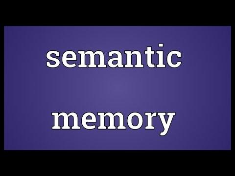 Semantic memory Meaning