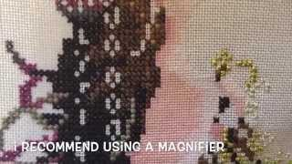 Cross Stitch #26  Part 2.  Stitching skin 1 over 1