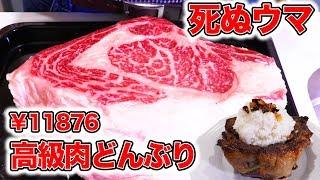 【死ぬウマ】11876円の高級ステーキ肉丼の結果が衝撃的だった!!!