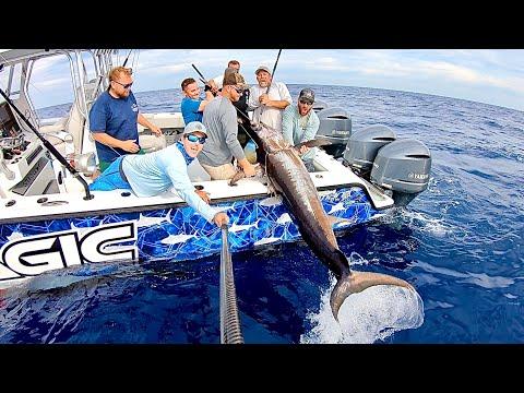 Hot October Swordfishing Aboard