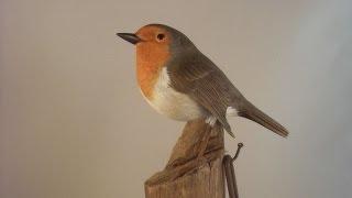 Secrets Of The Bird Carver