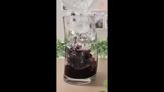 블루베리| 블루베리 음료 | 블루베리 요거트 | 블루베…