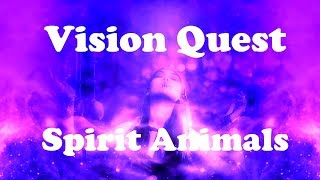 Vision Quest - Trance Meditation (awaken your spirit and your spirit animals)