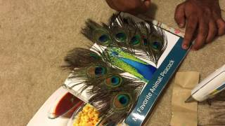 Touch and feel/ Sensory book for kids DIY