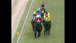 Season 2012 - Meeting 5 - Race 6 - Legal Maxim - C. Segeon - iDates.mu - Turf Mauritius