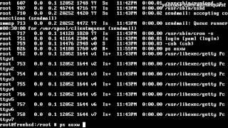 Консольные команды FreeBSD ч.1 / FreeBSD Unix Commands p.1