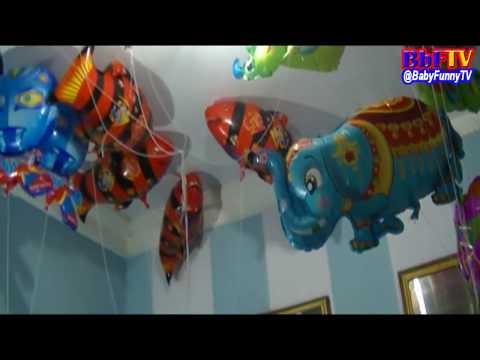Balonku Ada Lima - Balon Karakter Gajah, Spongebob, Love, Nemo, Spiderman, Snail