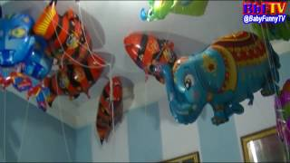 balonku ada lima   balon karakter gajah  spongebob  love  nemo  spiderman  snail