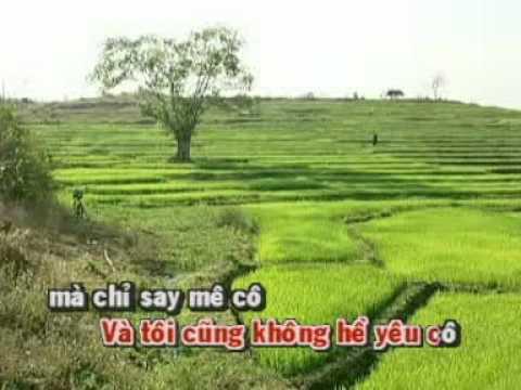 Anh Sang Phu Du   Linh Truc
