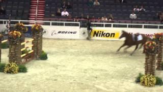 Chaos at the Washington International Horse Show!