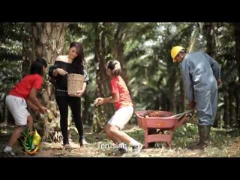 PALM OIL INDONESIA - ARI LASSO FEAT AUDY SAWIT - WWW.INFOSAWIT.COM