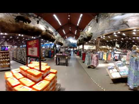 "360 VR ""look around"" Bass Pro Shops."
