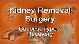 Kidney Removal Surgery