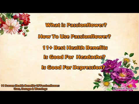 11 Proven Health Benefits Of Passionflower: Uses, Dosage & Warnings