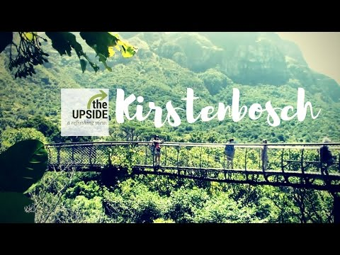 Things to do in South Africa: Kirstenbosch National Botanical Garden