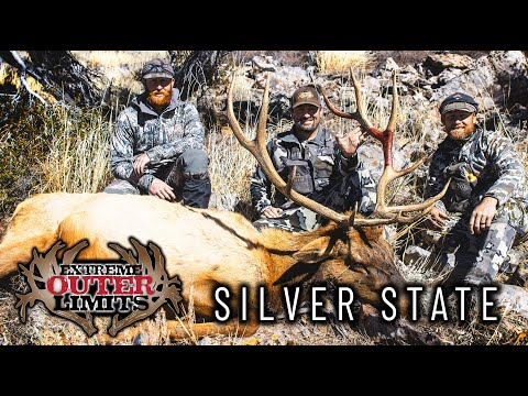 Silver State – Nevada Elk Hunting