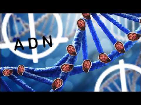 IAN - ADN