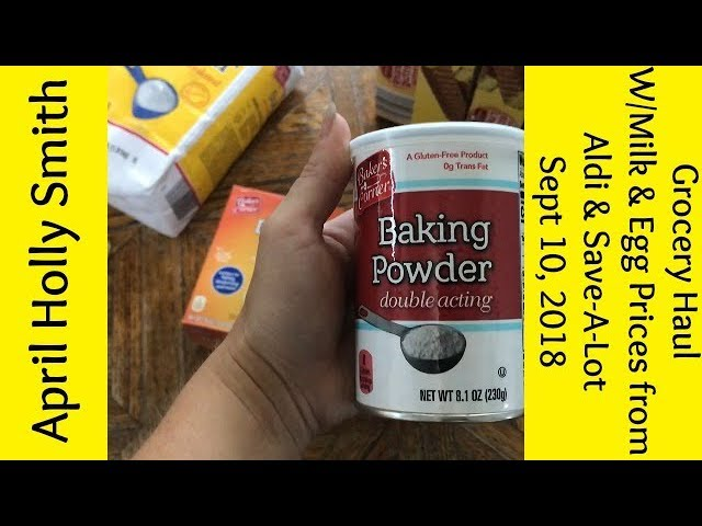 GROCERY HAUL|Milk & Egg Prices Aldi & Save-A-Lot |Sept 10, 2018 | April  Holly Smith