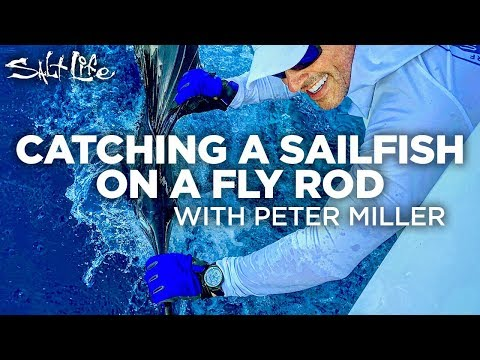 Catching A Sail Fish On A Fly Rod With Peter Miller | Salt Life