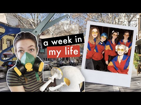 A Week In My Life As An Architecture Student