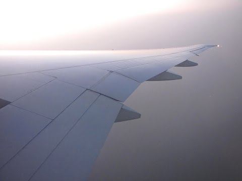 [Flight Report] QATAR AIRWAYS | Dubai ✈ Doha | Boeing 777-300ER | Economy
