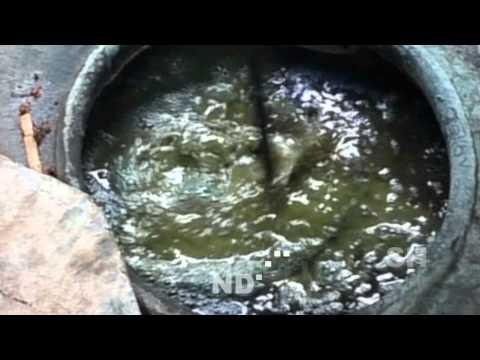 Indigo People: Natural Indigo Dye