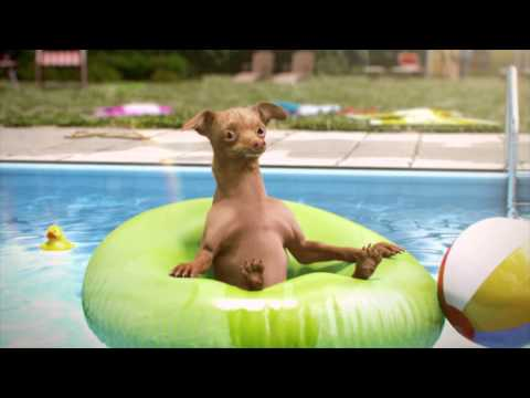 KOFOLA DOG- Whirlpool, full CGI TV commercial.