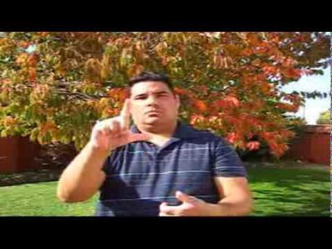 ASL For Denver Broncos & Colorado