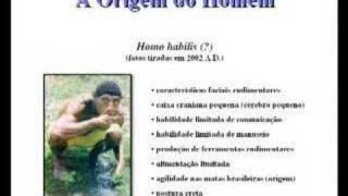 Homo Habilis do século XXI