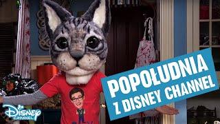 Popołudnia z Disney Channel!
