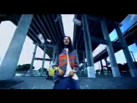 Dj Khaled  Fed up Remix Ft BTNH