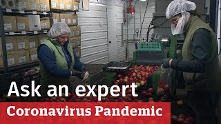 Your questions about Canada's food supply answered | COVID-19 Ask an expert