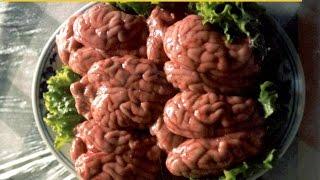 Мозги жареные